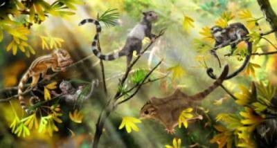 Arboreal Mammals in a Jurassic Forest