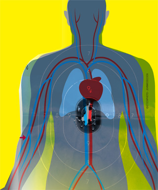 B27 Police Qualification Target Overlaid with Anatomical Structures