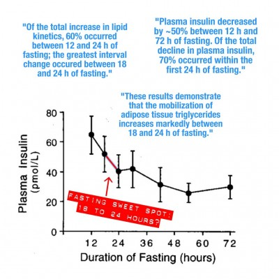 Fasting Sweet Spot