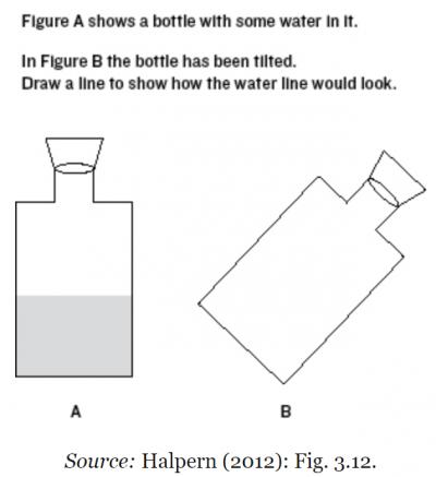 Halpern Bottle Tilting Question Diagram