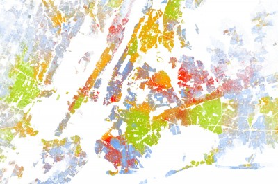 New York City Racial Map