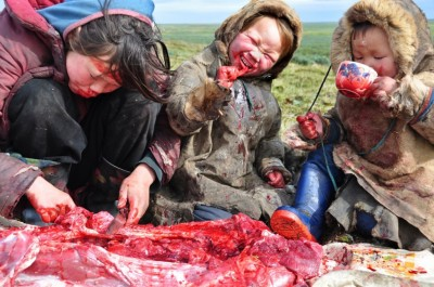 Traditional Inuit Diet