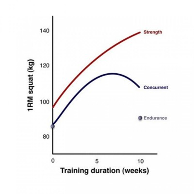 endurance-strength-squat-chart1_s
